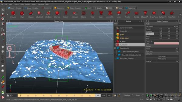 Killing particles with k Age: Up and Running with RealFlow