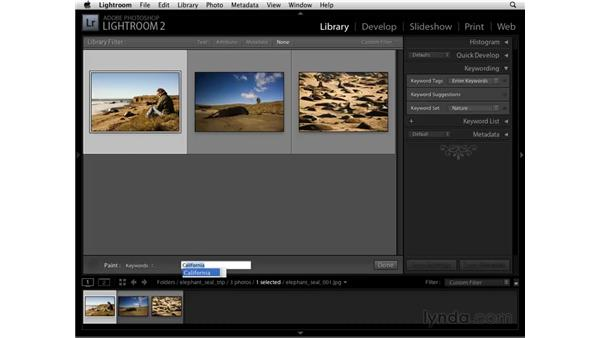 Keywording with the Painter tool: Lightroom 2 Essential Training