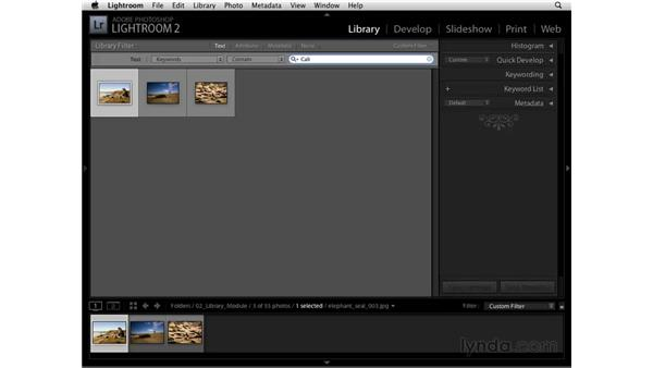 Filtering by text: Lightroom 2 Essential Training