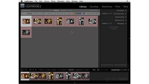 Filtering by attribute: Lightroom 2 Essential Training