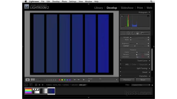 Understanding vibrance and saturation: Lightroom 2 Essential Training