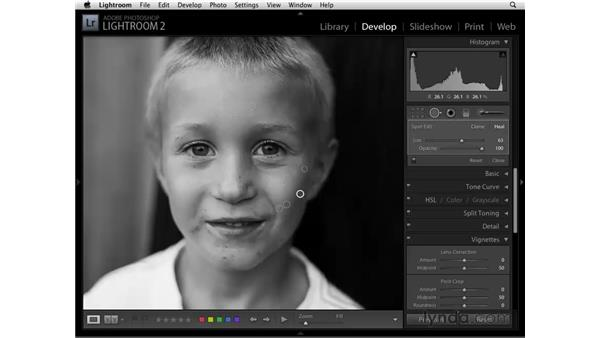 Retouching with the Spot Removal tool: Lightroom 2 Essential Training
