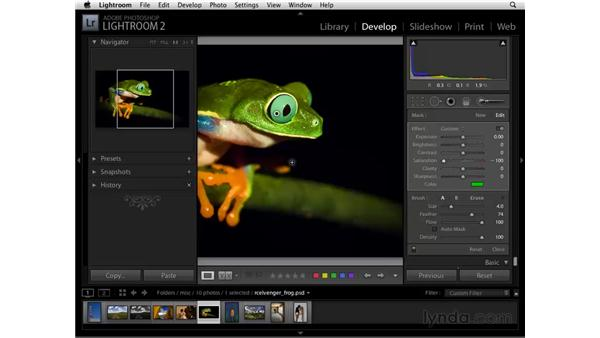 Working with color: Lightroom 2 Essential Training