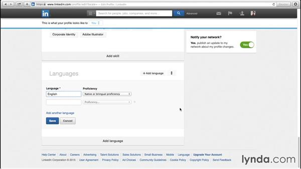 Adding your own sections: Up and Running with LinkedIn