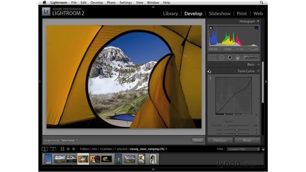 Correcting an image with the Tone Curve panel: Lightroom 2 Essential Training