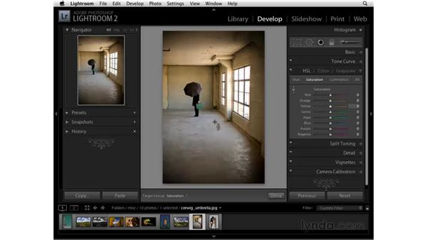 Desaturating color with HSL: Lightroom 2 Essential Training