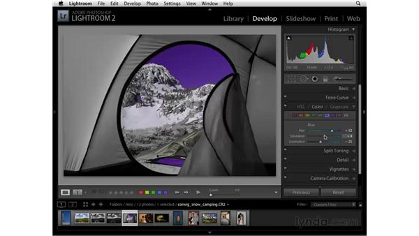 Using the Color panel: Lightroom 2 Essential Training