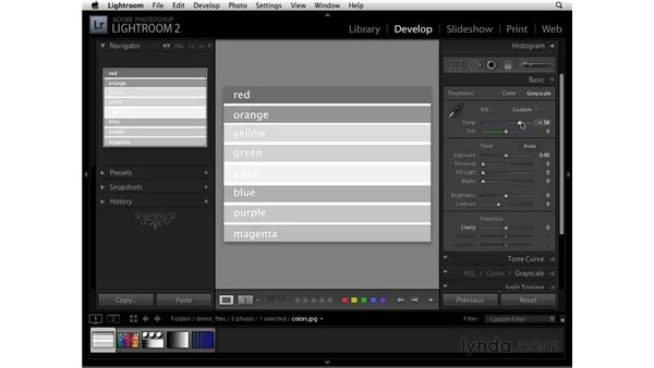 Converting to black and white: Lightroom 2 Essential Training