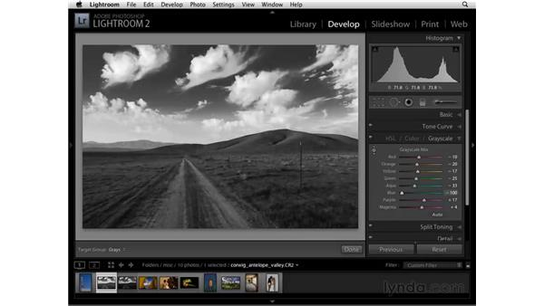 Modify black-and-white tone with the Grayscale panel: Lightroom 2 Essential Training