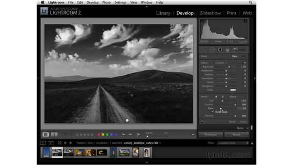 Enhancing black and white with other tools: Lightroom 2 Essential Training