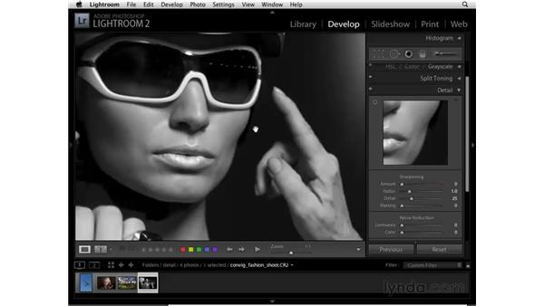 Reducing noise in a grayscale photo: Lightroom 2 Essential Training