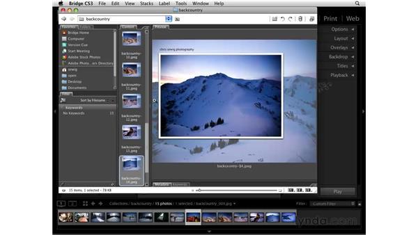Exporting as JPG or PDF: Lightroom 2 Essential Training
