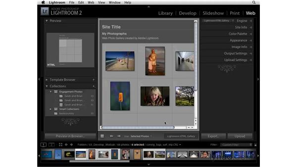 Selecting images with the Library and Smart Collections: Lightroom 2 Essential Training