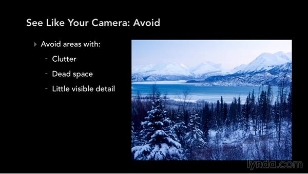 How to see like your camera does: Exploring Composition in Photography