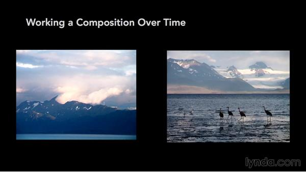 Working a shot over time: Exploring Composition in Photography