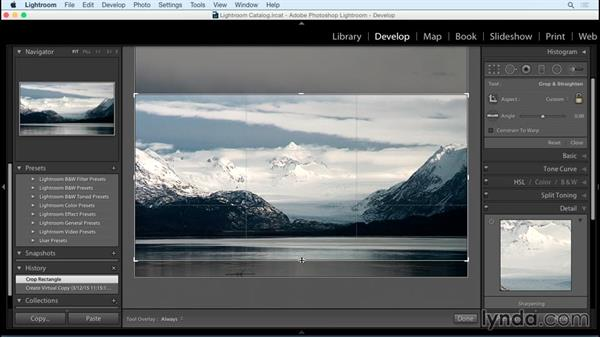 Cropping for simplicity: Exploring Composition in Photography