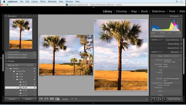 Cropping for orientation: Exploring Composition in Photography
