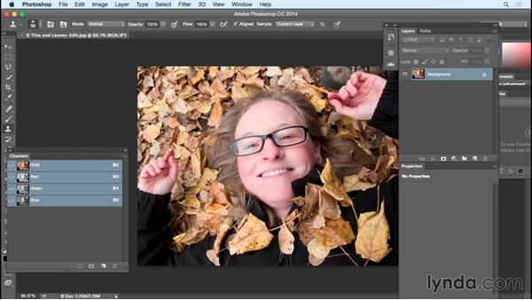 Removing unwanted elements through retouching: Exploring Composition in Photography