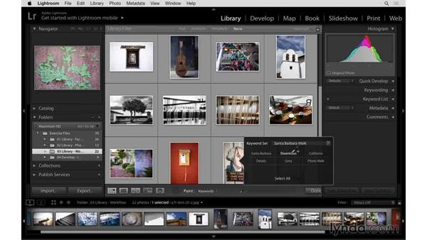 Adding keywords with the Painter: Lightroom: 2015 Creative Cloud Updates