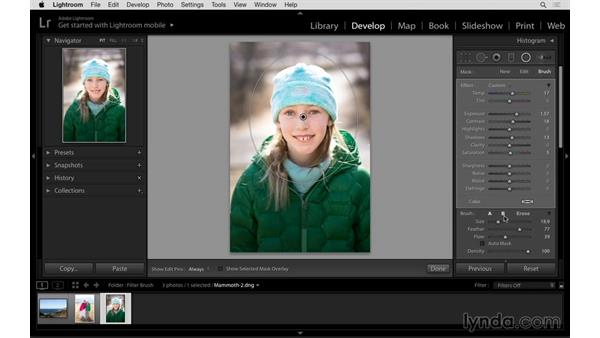 Making a better radial adjustment with the brush: Lightroom: 2015 Creative Cloud Updates
