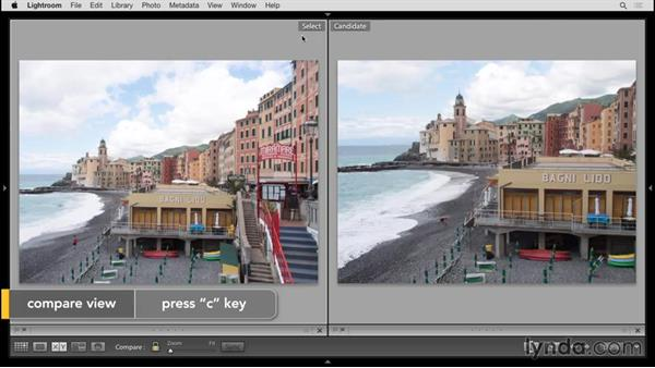 Comparing photos: Up and Running with Lightroom 6 and Lightroom CC