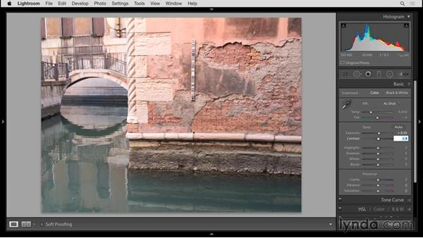 Adjusting tones in the Basic panel: Up and Running with Lightroom 6 and Lightroom CC