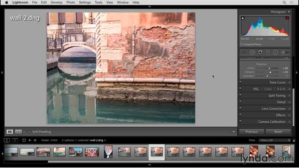 Adjusting saturation and vibrance in the Basic panel: Up and Running with Lightroom 6 and Lightroom CC