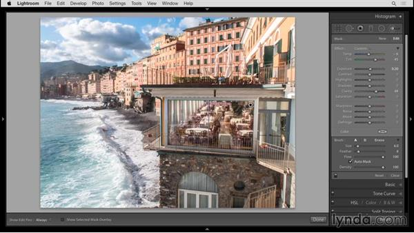 Editing with the Adjustment Brush: Up and Running with Lightroom 6 and Lightroom CC