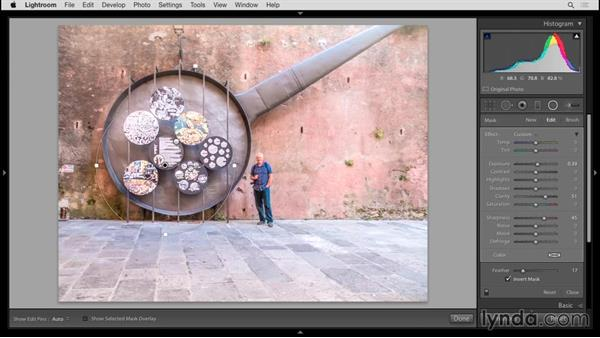 Using the Radial Filter and Filter Brush: Up and Running with Lightroom 6 and Lightroom CC