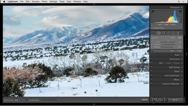 Removing distractions with the Spot Removal tool: Up and Running with Lightroom 6 and Lightroom CC