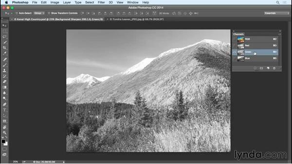 Understanding how channels make up an image: Creating Black-and-White Landscape Photos with Lightroom