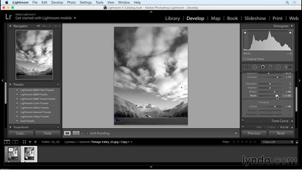 Fine-tuning brightness and contrast: Creating Black-and-White Landscape Photos with Lightroom