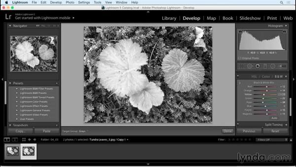 Making color-specific tone adjustments: Creating Black-and-White Landscape Photos with Lightroom