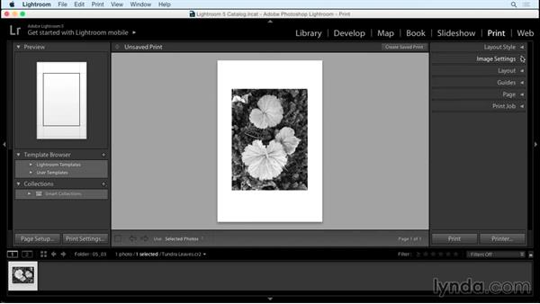Best practices for exporting and printing black-and-white landscapes: Creating Black-and-White Landscape Photos with Lightroom