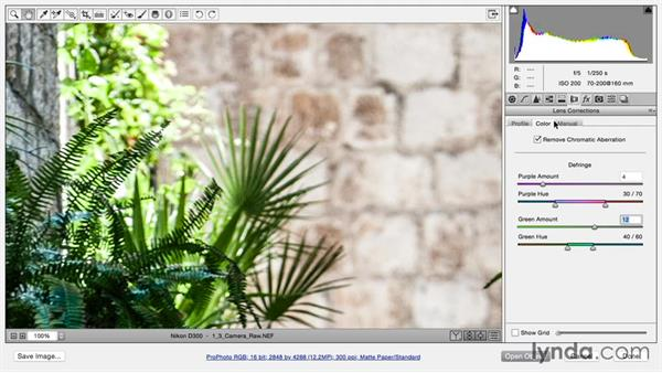 Correcting lens distortion in Camera Raw: Using and Creating Lens Profiles in Adobe CC Applications