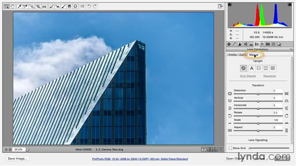 Making corrections in Camera Raw: Using and Creating Lens Profiles in Adobe CC Applications