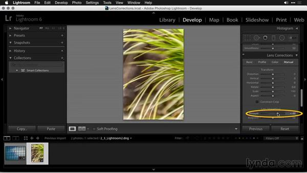 Organic corrections in Lightroom: Using and Creating Lens Profiles in Adobe CC Applications