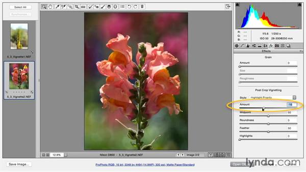 Removing vignetting: Using and Creating Lens Profiles in Adobe CC Applications