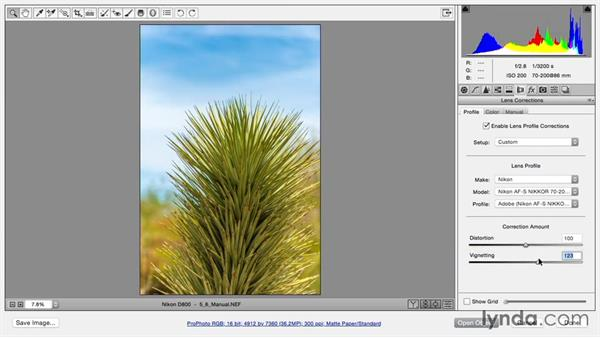 Fixing perspective manually: Using and Creating Lens Profiles in Adobe CC Applications