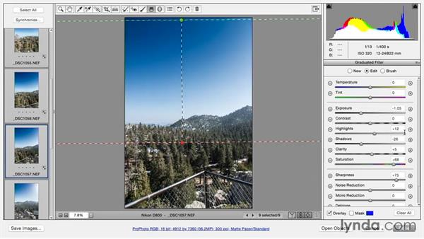 Merging a panoramic: Using and Creating Lens Profiles in Adobe CC Applications