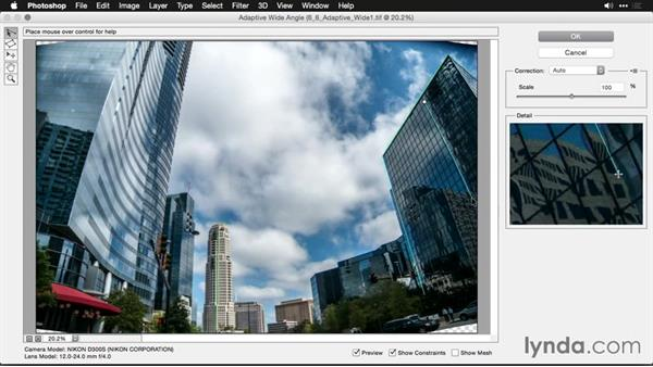 Advanced correction with the Adaptive Wide Angle command: Using and Creating Lens Profiles in Adobe CC Applications