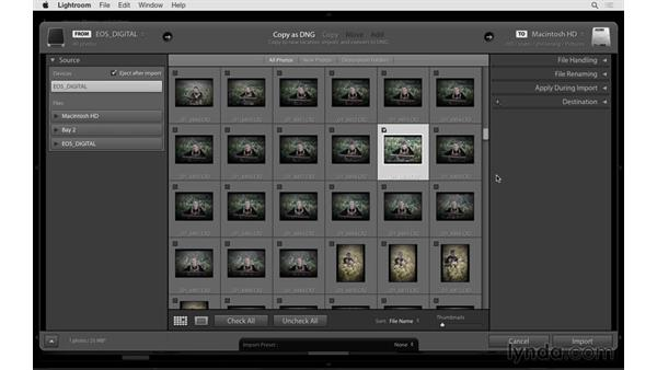 Importing photos from a camera or media card: Lightroom 6 Essential Training