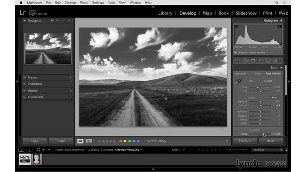 Creating better black-and-white photographs: Lightroom 6 Essential Training