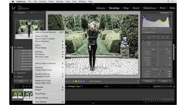 Using virtual copies: Lightroom 6 Essential Training