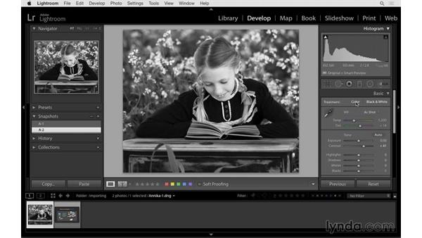 History and Snapshots panels and resetting the image: Lightroom 6 Essential Training