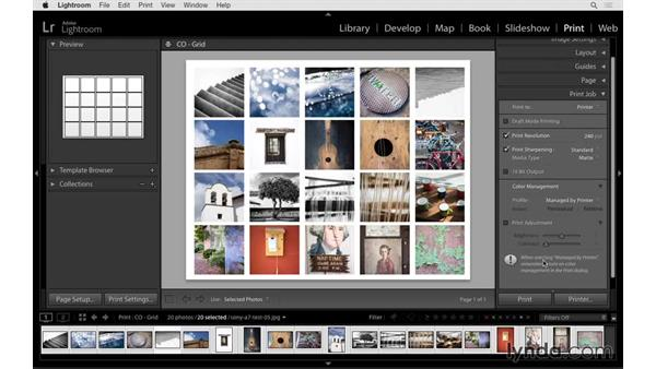 Creating the print: Lightroom 6 Essential Training