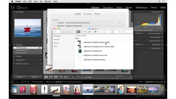 How to find and backup your catalog: Lightroom CC Essential Training (2015)