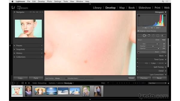 Learning how to use the Spot Removal tool: Lightroom CC Essential Training (2015)