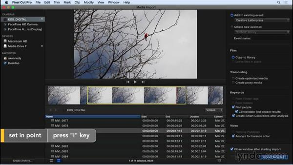 Importing from cards and file-based cameras: Final Cut Pro X 10.2 Essential Training