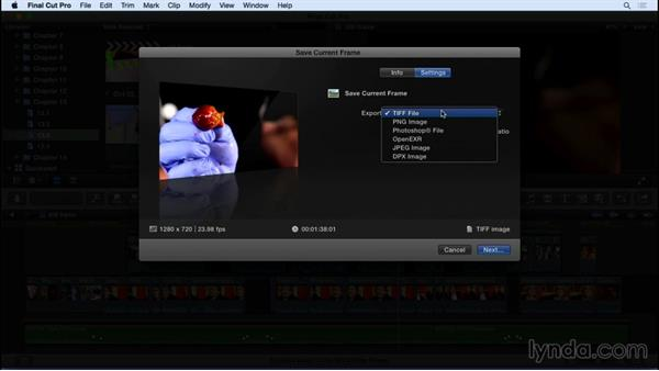 Exporting a still image: Final Cut Pro X 10.2 Essential Training